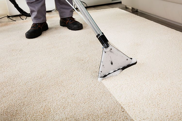 http://pcsaustin.com/wp-content/uploads/2018/07/carpet-cleaning-services-750x500.jpg