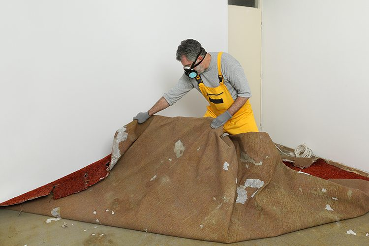 http://pcsaustin.com/wp-content/uploads/2018/07/carpet-restoration-services-in-austin-texas-750x500.jpg
